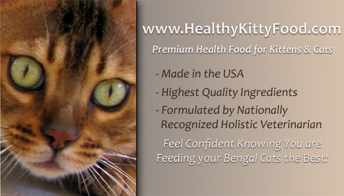 Click Here for Premium, Healthful Cat Food for Bengal cats, Bengal kittens & all feline companions