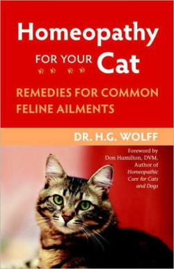 Homeopathy for Your Cat Remedies for Common Feline Ailments